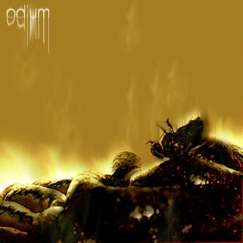 Fly Odium Finished 1